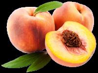 Обрезка персика — несложные но продуктивные методы ухода +141 фото