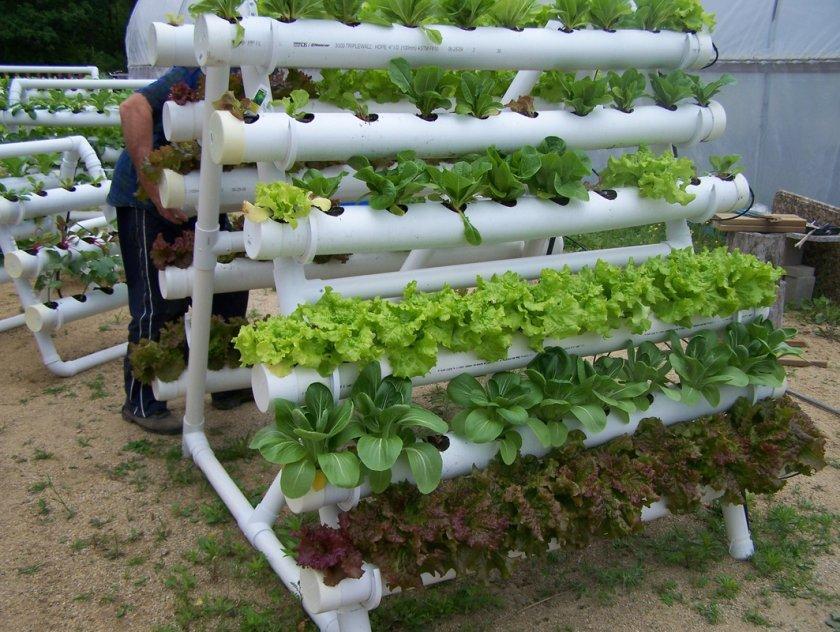 Супер идеи для дачи и огорода
