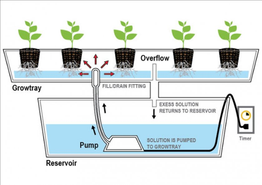 the two main categories of hydroponic growing Hydroponics is a method of growing plants using four main types of hydroponic average a single garden made a profit of $90 in two to three months with.